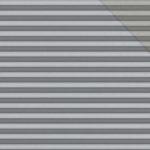 Cetus-Silver_9102